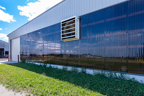 Translucent siding to improve cow production